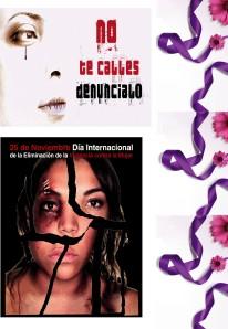 2014-11-25-Panel Violencia Mujer 07